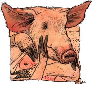 Weekendavisen, Gitte Skov, gs, tremmesvin, burgris, svineindustri, animal cruelty, moderne landbrug, dyremishandling,